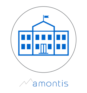 amontis consultig ag - english